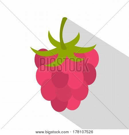 Ripe fresh raspberry icon. Flat illustration of ripe fresh raspberry vector icon for web isolated on white background