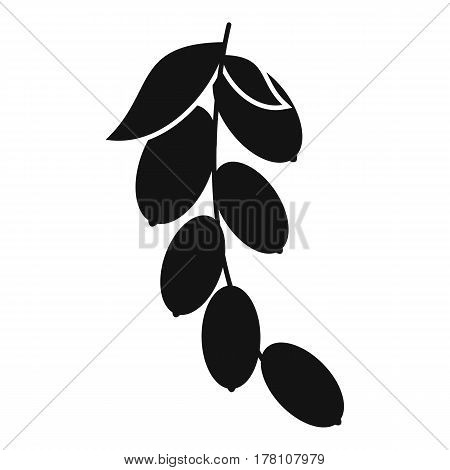 Branch of cornel or dogwood berries icon. Simple illustration of branch of cornel or dogwood berries vector icon for web