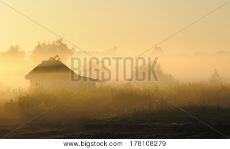 The log hut in a morning fog against the wood