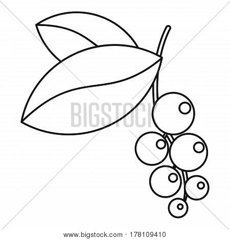 Currant branch with leaves icon. Outline illustration of currant branch with leaves vector icon for web