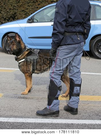 Police Dog While Patrolling The City Streets To Prevent Terroris