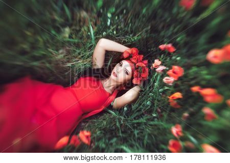 Portrait of goorgeous woman laying on flower poppy field in summer. Attractive mixed race asian caucasian girl in red dress resting on nature and looking at camera. Top view creative shot.