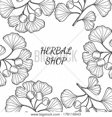 Square banner. Organic herbal shop leaf template packaging cosmetic label poster branding. Design with ink sketch hand drawn illustration.