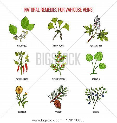 Varicose Vein Herbal Remedies