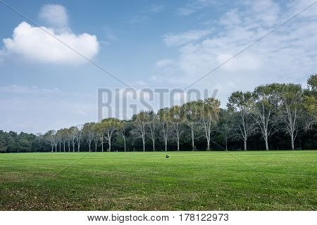 Milan (Lombardy Italy): the Parco Nord at fall.