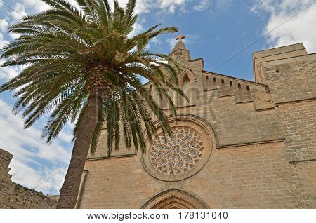 A cathedral with a palm tree and the sky with clouds in the background