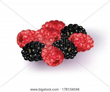 Rasp berries and black berries on white background