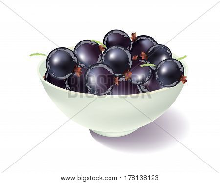 Bowl of black currents on white background