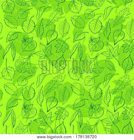 Seamless Background, Green Tree Leaves Contours and Silhouettes, Oak, Willow, Liquidambar, Hawthorn, Poplar, Aspen, Hazel, Ginkgo Biloba, Elm, Birch, Alder, Linden, Hornbeam, Chokeberry, Lilac. Vector