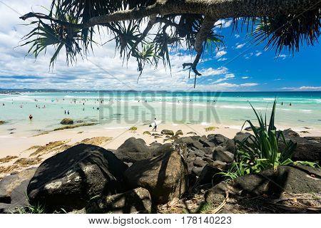 Pandanus trees overhang a busy Coolangatta beach on the Gold Coast, Queensland, Australia. January 7, 2016.