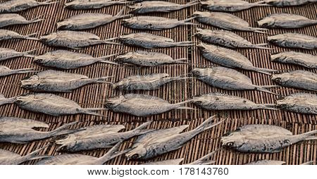Lots Of Fish Salted And Dry Preparation For The Market