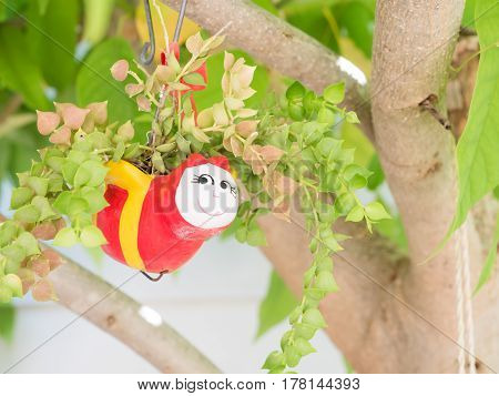 Beautiful plant and plaster bee doll in flower opt in Garden