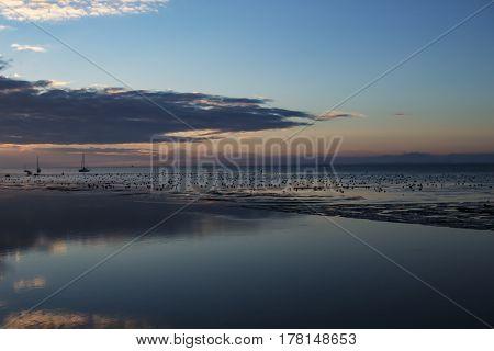 Birds at sea as dawn breaks as the sun rises