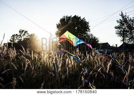 kite summer boy children's game the regiment the sun spikes