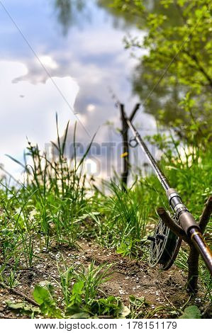 Fishing rod on the river bank among greenery on a fishing trip in the spring