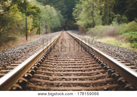 Railroad train tracks in the lush forest of the Columbia River Gorge in Washington USA. poster