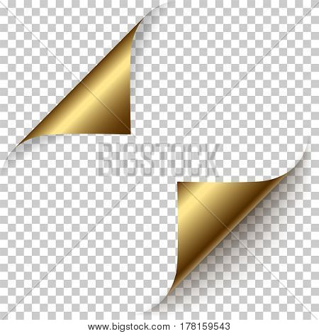 Vector realistic golden foil paper corners set with soft shadow on transparent background. 3D page corner curled. Blank sheet of paper. Design element.