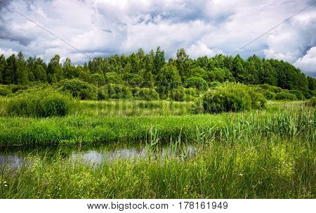 The river flows through the Belarus meadows in summer