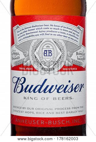 London,uk - March 21, 2017 : Bottle Label Of Budweiser Beer With New Twist Off Cap On White. An Amer