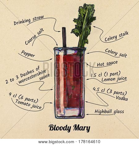 ink drawing and watercolor illustration of cocktail Bloody mary and its ingredients. On old paper background.