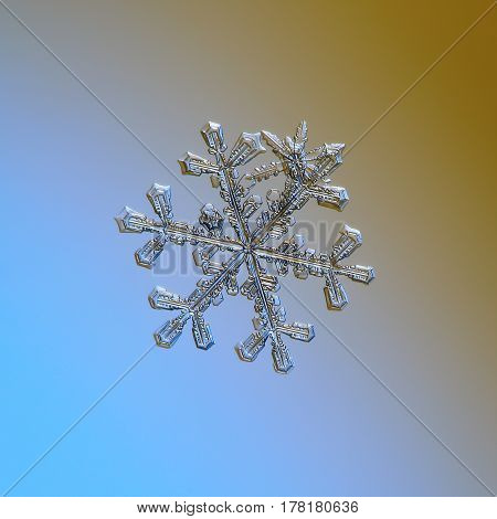 Macro photo of real snowflake: large snow crystal of stellar dendrite type with six ornate arms and side branches, glittering on smooth blue - brown gradient background.