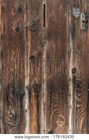 Detailed Fragment Of Wooden Background, Texture