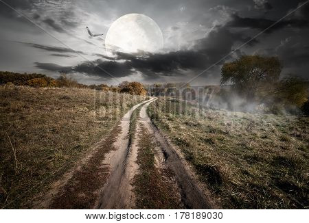 Country road under round moon at the night. Elements of this image furnished by NASA
