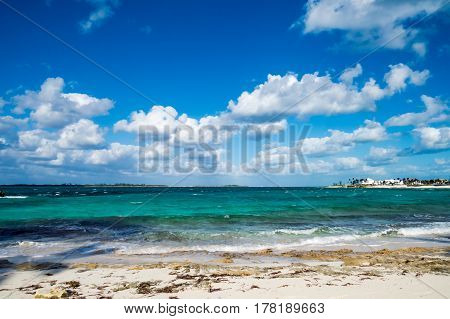 A beautiful tropical cove with algae, clouds, waves, and distant palm trees. New Providence Island, Nassau, Bahamas.