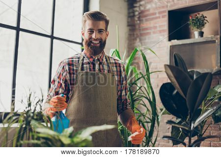 Confident Handsome Florist With Red Beard Spraying And Moistening Plants