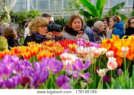 Moscow, Russia - March 1, 2017: People attend spring flowers market at day time