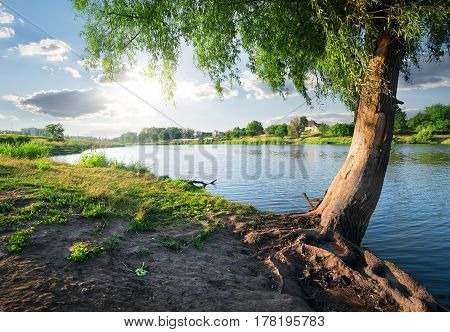 View on a calm river in sunny day