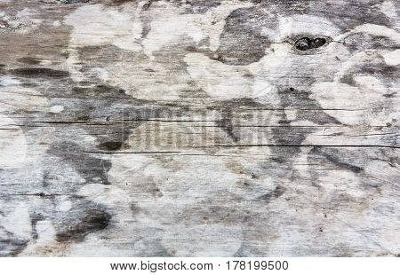 wall gray old vintage wooden texture close-up