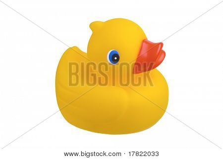 Rubber duck bright yellow bath toy isolated on white background