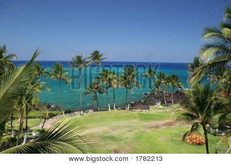Hawaii Kona Beach