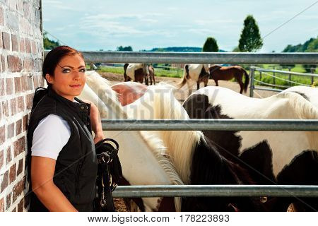 young woman with her horses on horse ranch
