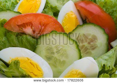 Close up of healthy salad ingredients