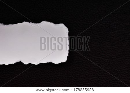 empty paper on a dark textured skin for text