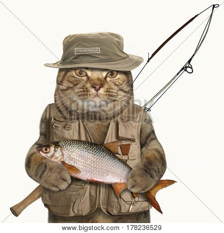 The brave cat is holding a big fish and a spinning rod. He looks like a real fisherman. White background.