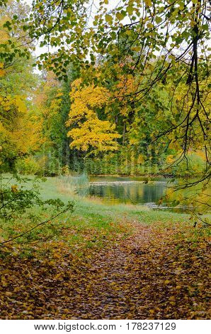 The road strewn with autumn leaves of maple and Linden trees, overlooking the lake.