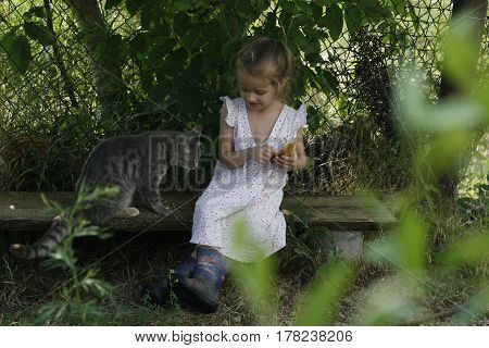 little smiling girl in a bright vintage dress and rubber boots and a gray cat on the bench in the shade of thick tree