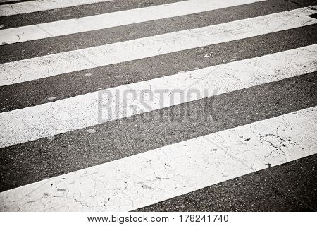 Zebra crossing without anyone crossing it.