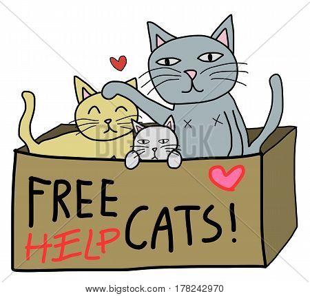 cartoon free hand style cat in donate box