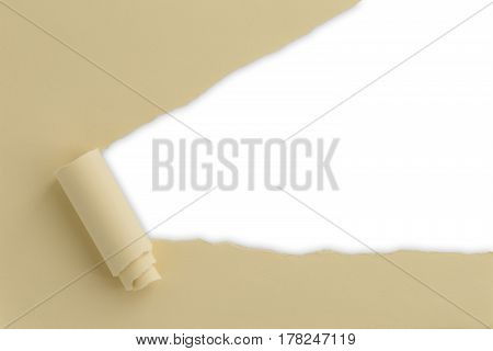 Torn Paper White Background
