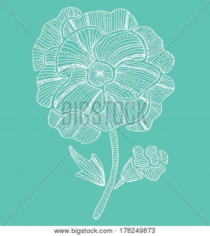 Beautiful poppy flower on a turquoise background. Spring and summer postcard.