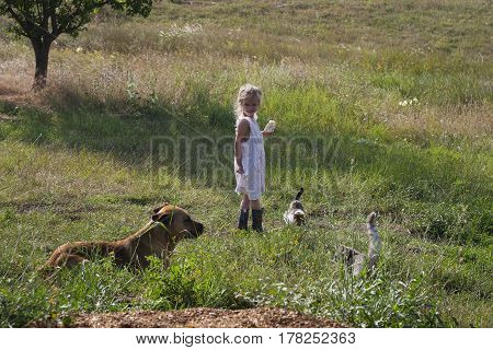 country life - a little girl in a bright vintage dress and rubber boots to feed the cats and dog running around and playing among the steppe