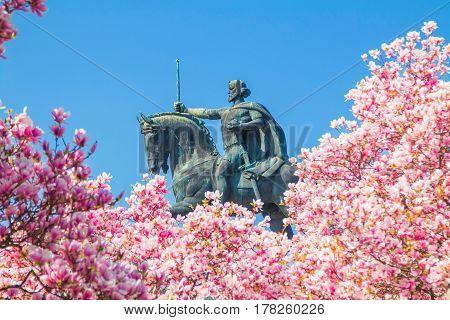 King Tomislav statue in Zagreb, Croatia, over Japanese cherry blossom in spring