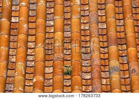 Classical Chinese tile on the roof of temple