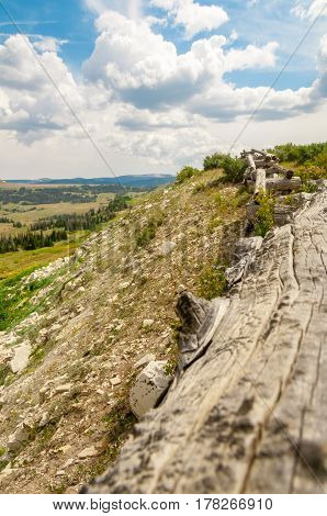 A log barrier for the edge of the cliff