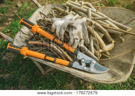 Loppers and branches scissors for springtime garden work