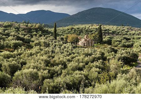 Typical landscape with old church and olive trees in Peloponnese, Greece